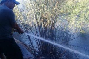 Kebakaran  Sering Terjadi, Pemkab Minahasa  Terus Beri Imbauan kepada Masyarakat